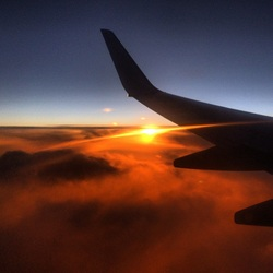 In the morning I fly away