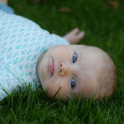 Het gras is altijd groener...