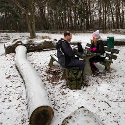 winterse picknick