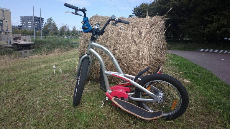 Stepbike - Paddenstoelen hebben het maaien overleefd.