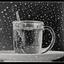 Pickwick tea 2