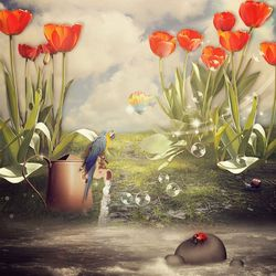 Tulip Field ...