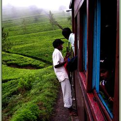 Third Class Ticket