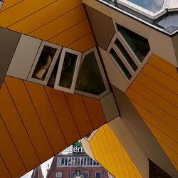 Rotterdam 53.