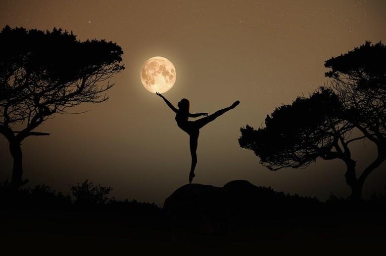 Dancing with the Stars - Een gooi naar Foto van de dag met deze foto, Dancing with the Stars. Hoop dat deze plaat jullie kan smaken.....<br /> <br />