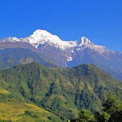 Verschil in begroeiing Annapurna massief (Nepal)