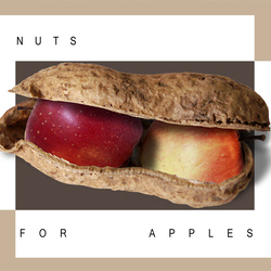 Nuts for apples