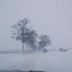 Sneeuwwinter 2009-2010