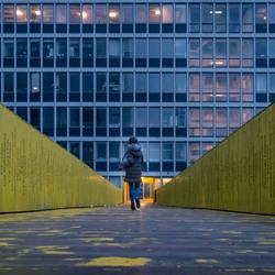 Luchtsingel Rotterdam