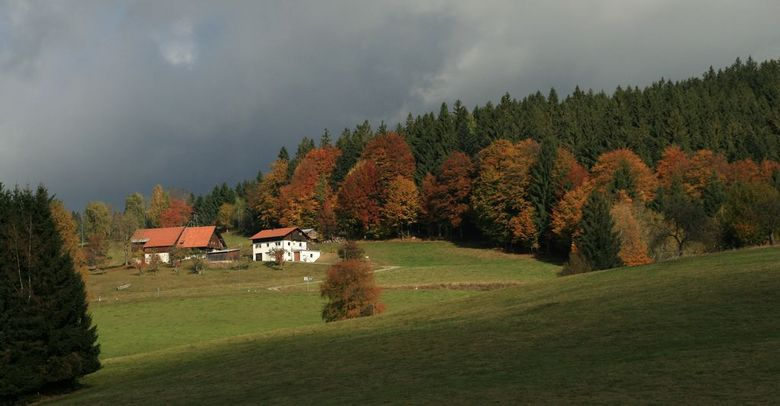 Stausee am Dreisessel 1 - Neureichenau omgeving bij het stuwmeertje, waar je omheen kon lopen.<br /> <br /> Herfstkleuren volop aanwezig en de dreig