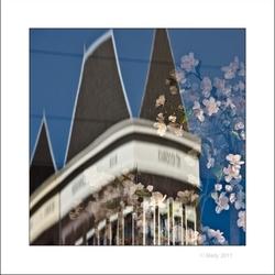 Lente in Utrecht 14