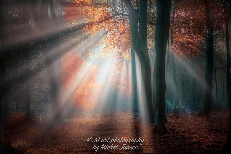 autumn beamers - Autumn Speulderbos