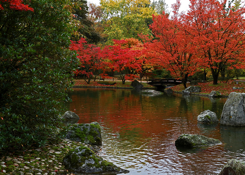 Japanse Tuinen -