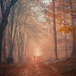 1 december wandeling