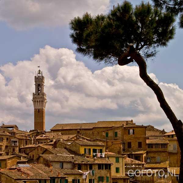 Siena - Begin 2008 zijn we met een groep vrienden naar Toscane geweest. Normaal gesproken komen we alleen daar als het hartje zomer is en de lucht str