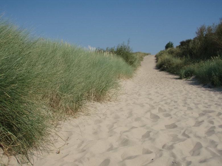duinen - pad door de duinen