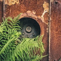 Natuur vs oude industrie