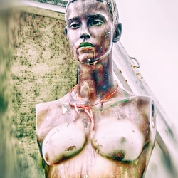 the mutilated mannequin