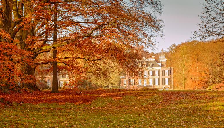 Bewerking herfst huis zypendaal natuur foto van hvr zoom