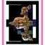 Bambi voor Pink Ribbon
