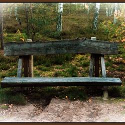 op een bankje in het woud...