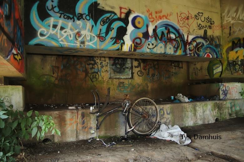 tys damhuis 16-09  (117) - onder een brug. leeft het gewoon:<br /> gemaakt door tys damhuis