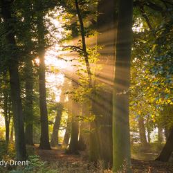 Haelen, Limburg