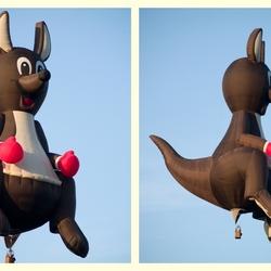 De vliegende kangoeroe, 2.