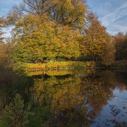 Herfst in Clingendael 2