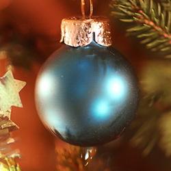 In de kerstboom 5