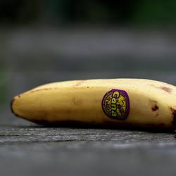 Gewoon een eerlijke banaan