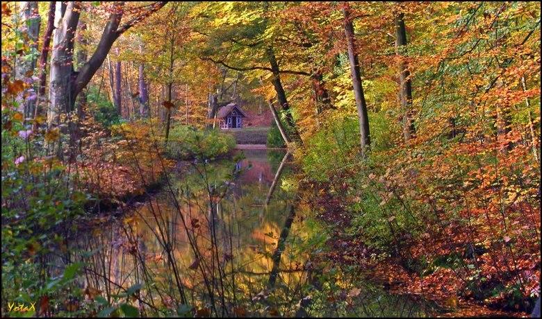 huisje van Hans en Grietje - Het bos is sprookjesachtig  mooi met al zijn herfstkleuren, zo mooi dat ik vanzelf het huisje van Hans en Grietje zag sta
