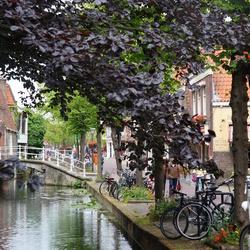 De grachten van Delft