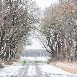 Winter in Vries - pad