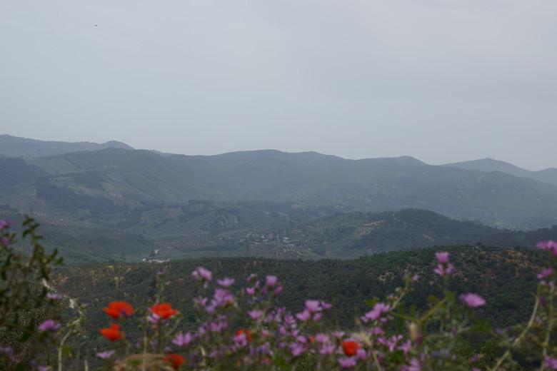 berglandschap -