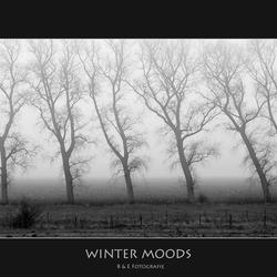Winter Moods..