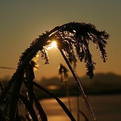 winters zonsondergang (1300ste)