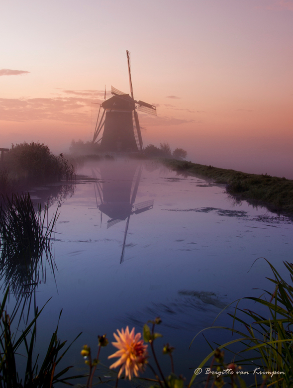 Dutch - Vanochtend samen met Doris (Dodsi) naar de polder met mist geweest, het was genieten.<br /> Deze foto is een half uur voor zonsopkomst genome