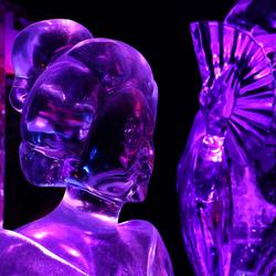 IJsbeeldenfestival Zwolle
