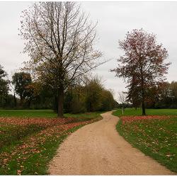 Golfterrein in Hasselt 16