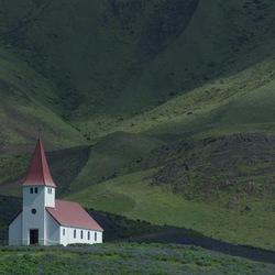 het vik kerkje omringt door luphine