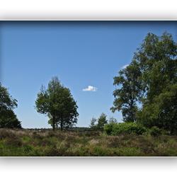Een rondje Heide