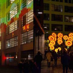 GLOW 2019 - Project 21 Zonnebloemen voor van Gogh_III