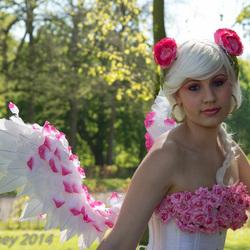 ELF Fantasy Fair 2014 - Kasteel de Haar