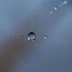 Web drops 2