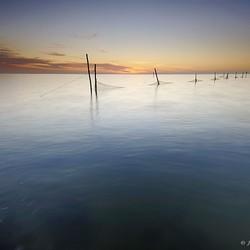 Visnetten IJsselmeer