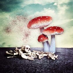 Bewerking: FungusFear . . .