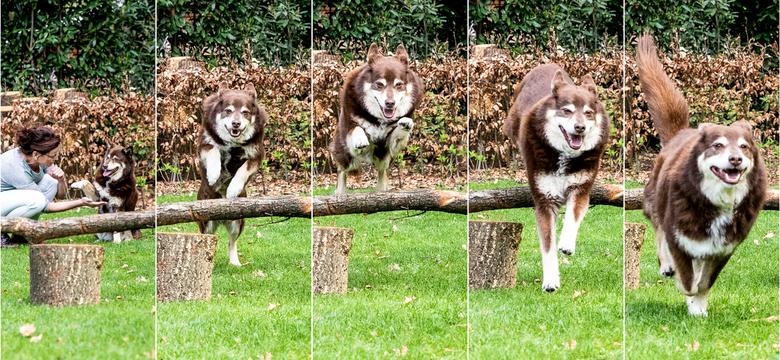Jump - In LR een seriefotografie gemaakt