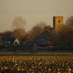Noord Holland 2