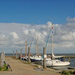 Haven van Schier
